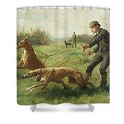 Exercising Greyhounds Shower Curtain