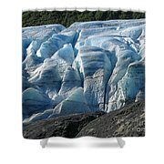 Exit Glacier Viewpoint Shower Curtain