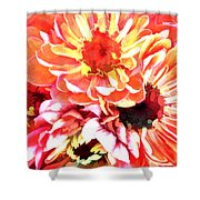 Explosion Of Bright Zinnias Shower Curtain