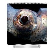 Eye Flash Squid Shower Curtain