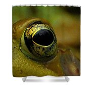 Eye Of Frog Shower Curtain