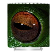 Eye Of The Frog Shower Curtain