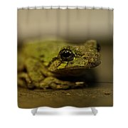 Eye To Eye Shower Curtain