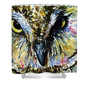 Eyes Of Owl's 13 Shower Curtain