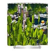Fabulous Water Hyacinth  Shower Curtain