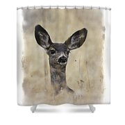 Faded Fawn Shower Curtain