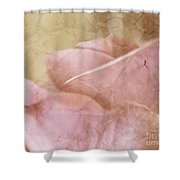 Faded Past Shower Curtain