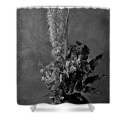 Fading Life Shower Curtain