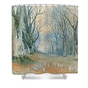 Fairies And Squirrels Shower Curtain by Richard Doyle