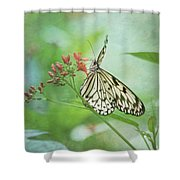 Fairy Dance Shower Curtain