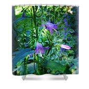 Fairy Hats Shower Curtain