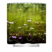 Fairy Meadow Shower Curtain