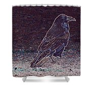 Faithful Raven Shower Curtain