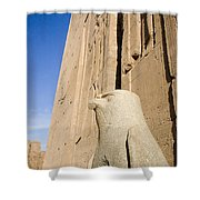 Falcon Statue At Edfu Shower Curtain by Darcy Michaelchuk