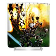 Fall Blooms Shower Curtain