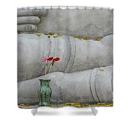 Fall Buddha #1 Shower Curtain