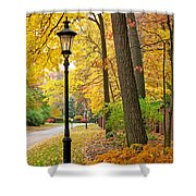 Fall Color And Lamppost Shower Curtain