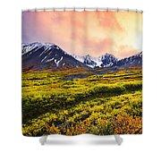 Fall Colours And Auriol Range Shower Curtain
