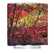 Fall Comes To New England Shower Curtain