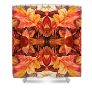 Fall Decor Shower Curtain