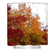 Fall Filled Sky Shower Curtain