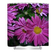 Fall Flowers In Bloom Shower Curtain