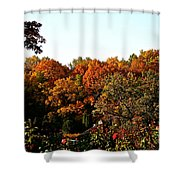 Fall Foliage And Roses Shower Curtain