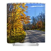 Fall Forest Road Shower Curtain by Elena Elisseeva