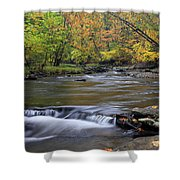 Fall Forward Shower Curtain