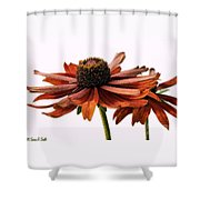 Fall Girls Shower Curtain