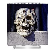 Fall  Halloween On Tillson Street Shower Curtain