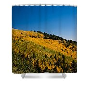 fall in Ruidoso Shower Curtain