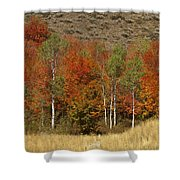 Fall In Snake River Canyon Shower Curtain
