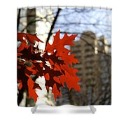 Fall In The City 2 Shower Curtain