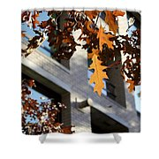 Fall In The City 3 Shower Curtain