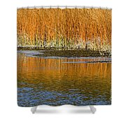 Fall In Yellowstone National Park Shower Curtain