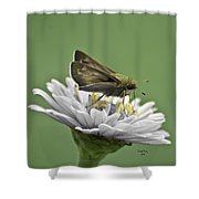 Fall Is Right Around The Corner Shower Curtain