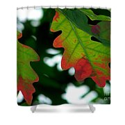 Fall L Eaves Shower Curtain