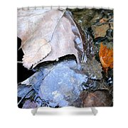 Fall Leaf Abstract Shower Curtain