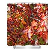 Fall Leaves - Digital Art Shower Curtain
