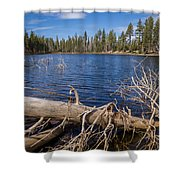 Fall Logs On Reflection Lake Shower Curtain