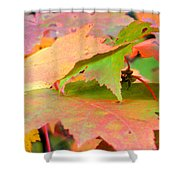 Fall Maple Leaves Shower Curtain