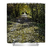 Fall On Macomb Orchard Trail Shower Curtain