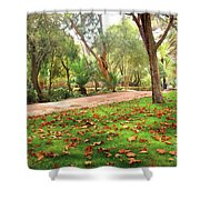 Fall Park Shower Curtain