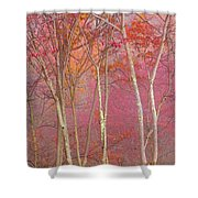 Fall Pastels Shower Curtain