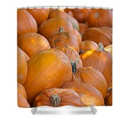 Fall Pumpkins Shower Curtain