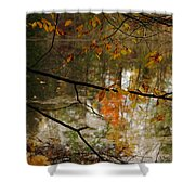 Fall River Branches Shower Curtain