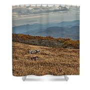 Fall Scene On Whitetop Mountain Va Shower Curtain