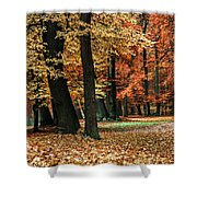 Fall Scenery Shower Curtain