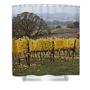 Fall Scenic Shower Curtain